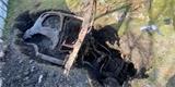 Brit zabíjel v karanténě čas kopáním na zahradě. Našel oblíbený Ford z 50. let
