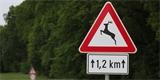 Na těchto silnicích dochází nejčastěji ke střetům se zvěří. Střední Čechy vedou